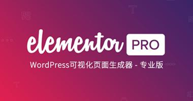 Elementor Pro 可视化编辑器汉化版[免费持续更新]